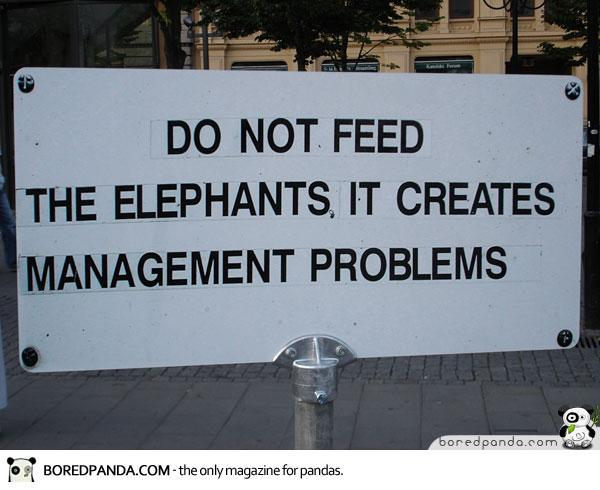 Funny Signs Elephants