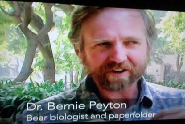 Bear Biologist