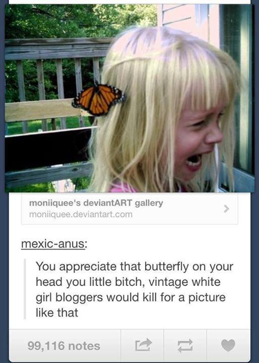 Butterfly Tumblr Post