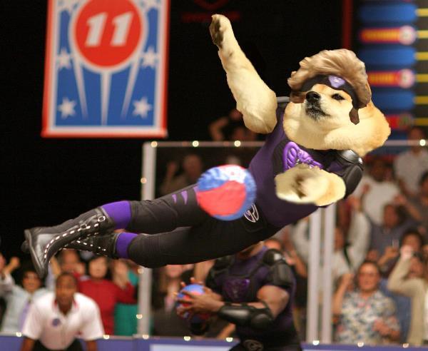 Doge Ball