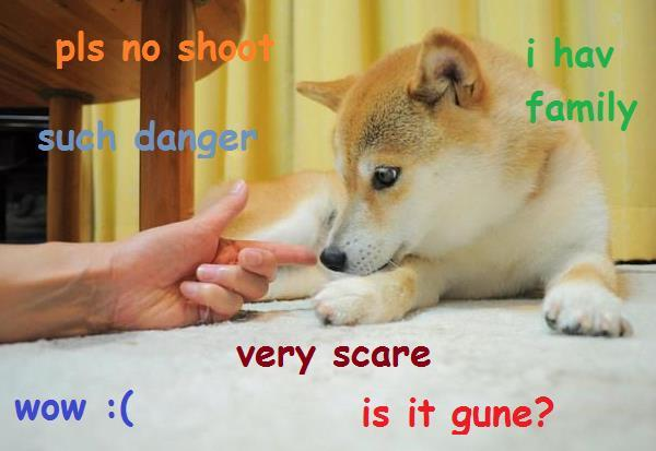 Doge Meme No Shot