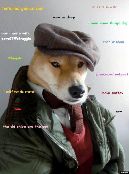 Doge Meme Stylish
