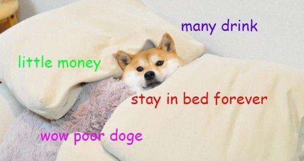 Doge Meme: The Best of Doge
