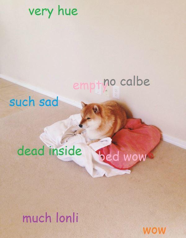 Shiba Inu Meme Very Sad