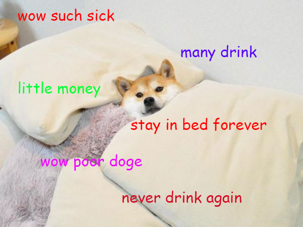 Shiba Inu Tucked In Bed