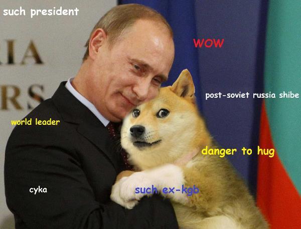 Shibe Putin