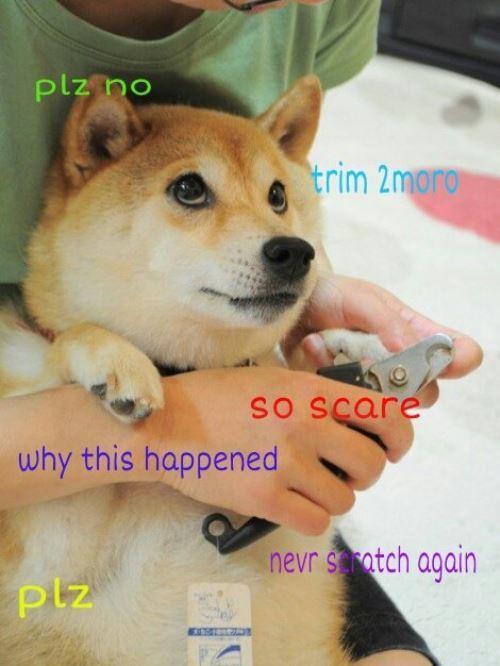 So Scared