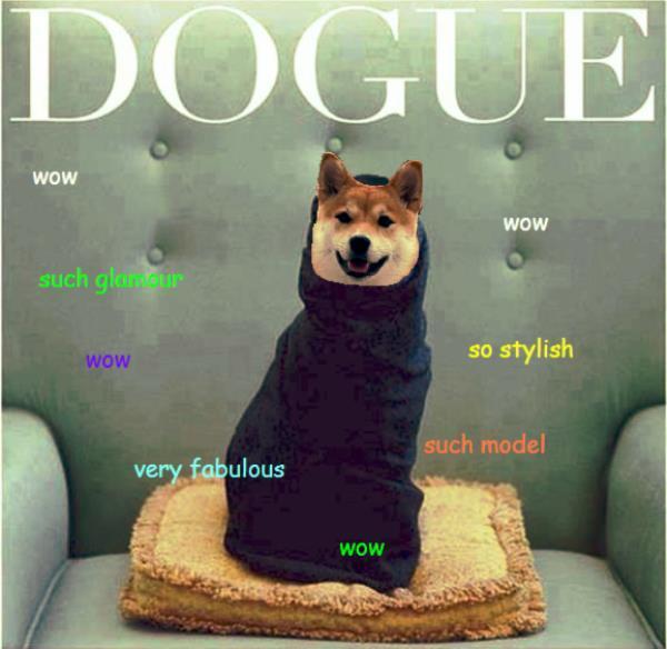 Vogue Doge