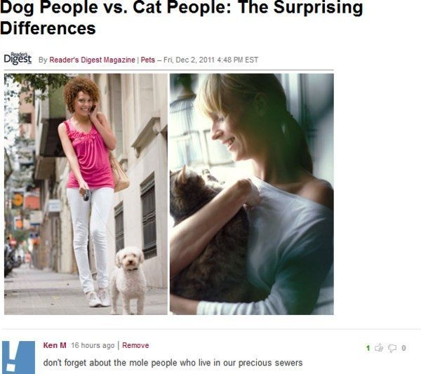 Funniest Troll Dog People Versus Cat People