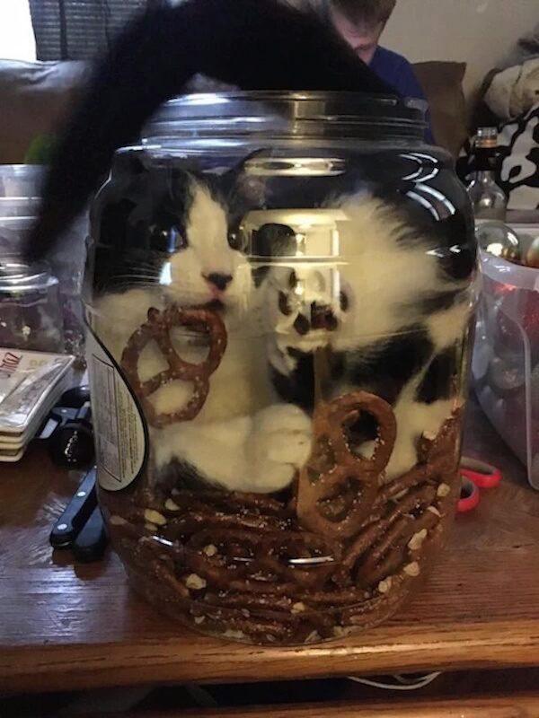 Pretzel Jar