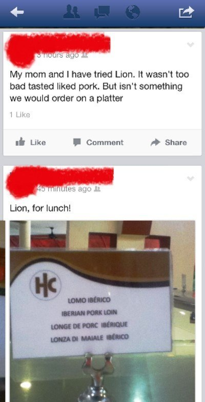 Lion For Lunch