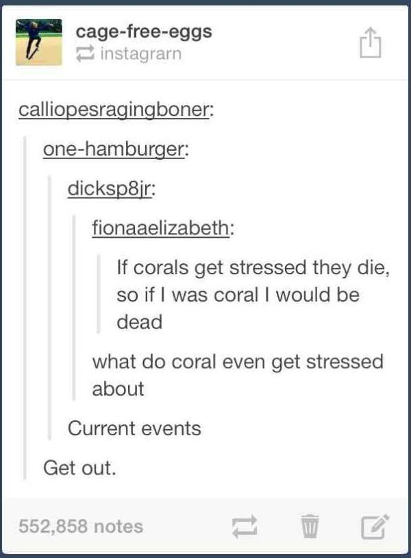 Coral Reefs Tumblr Post