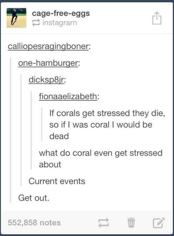 Coral Reefs Tumblr Post