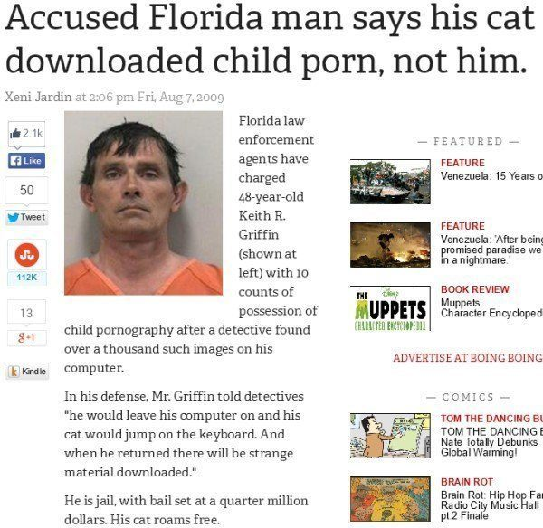 Florida Man Cat Downloads