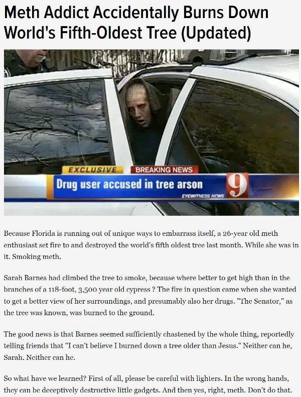 Florida Man Meth Addict