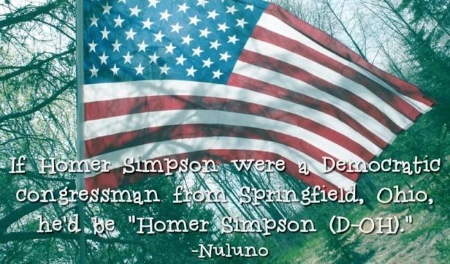 If Homer Simpson Were A Congressman