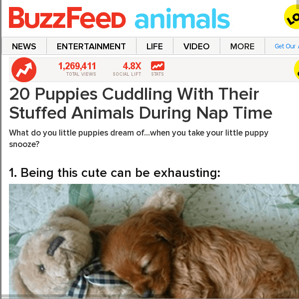 Funny Buzzfeed Articles