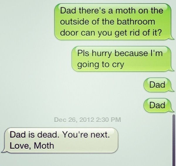 Dad Is Dead Love Moth