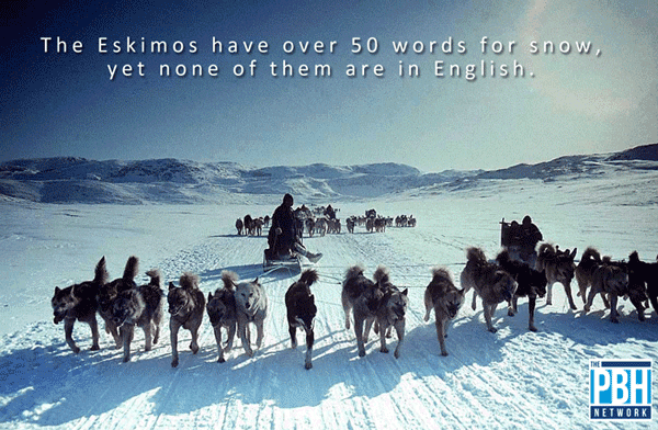 Eksimo's Word For Snow