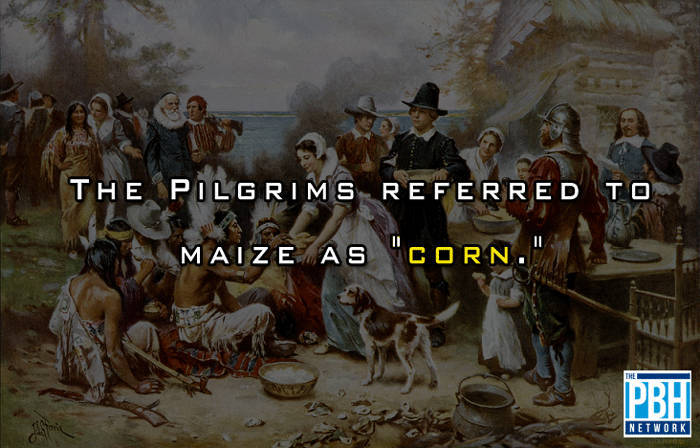 Pilgrims Word For Maize