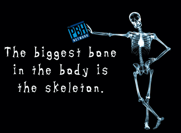 The Biggest Bone In The Body