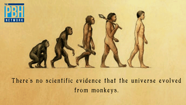 The Universe Evolved From Monkeys