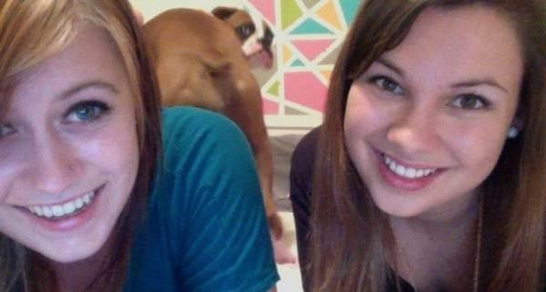 Dog Butt Photobomb