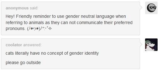 Gender Neutral Pets
