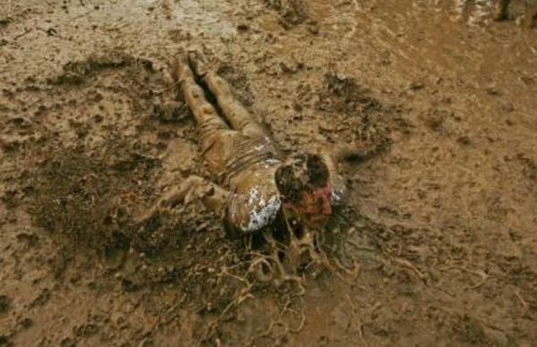 rolling-in-the-mud