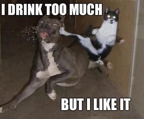 drink-like