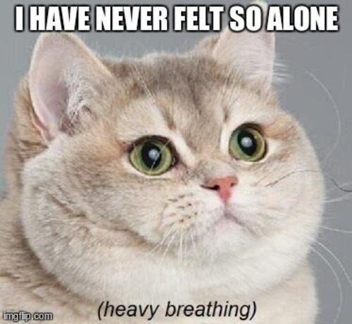 felt-alone