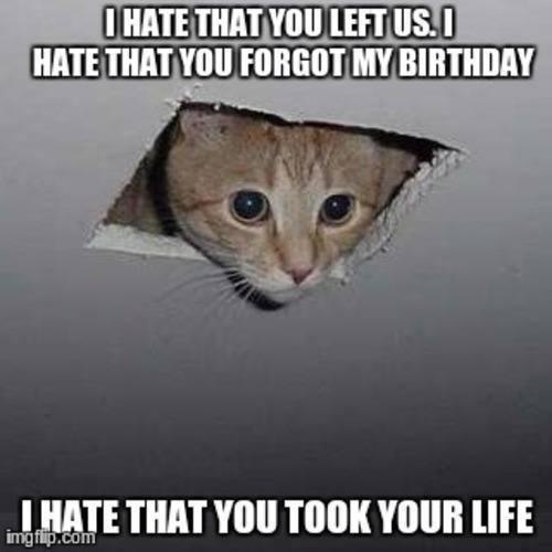 hate-took