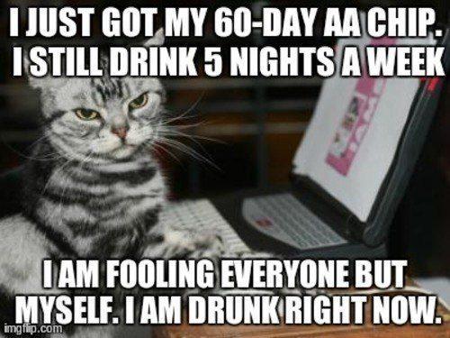 still-drunk