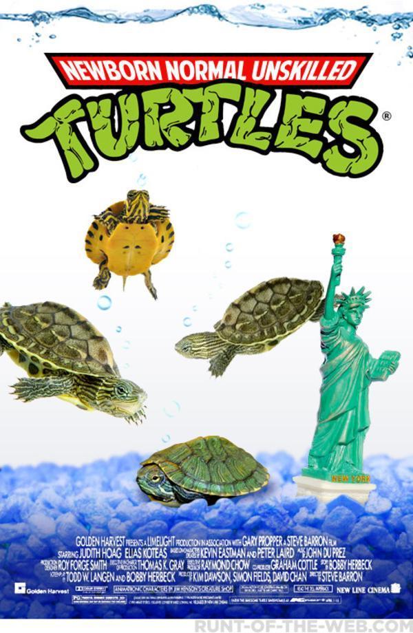 Ninja Turtles prequel