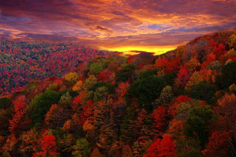 Colorful Fall Photos Sunset