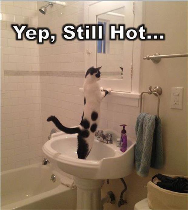 Funniest Pinterest Pictures Still Hot