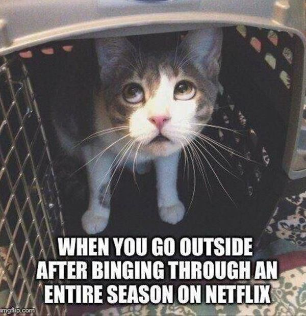Funny Pinterest Pictures Netflix