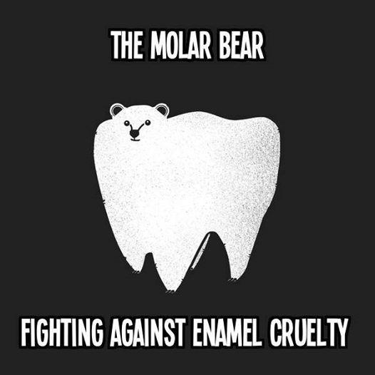 Molar Bears