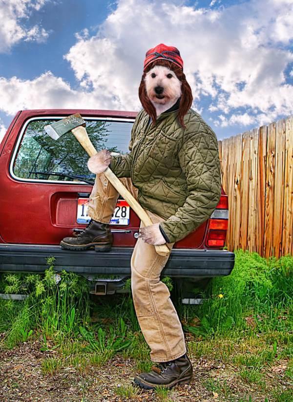 Dog Lumberjack
