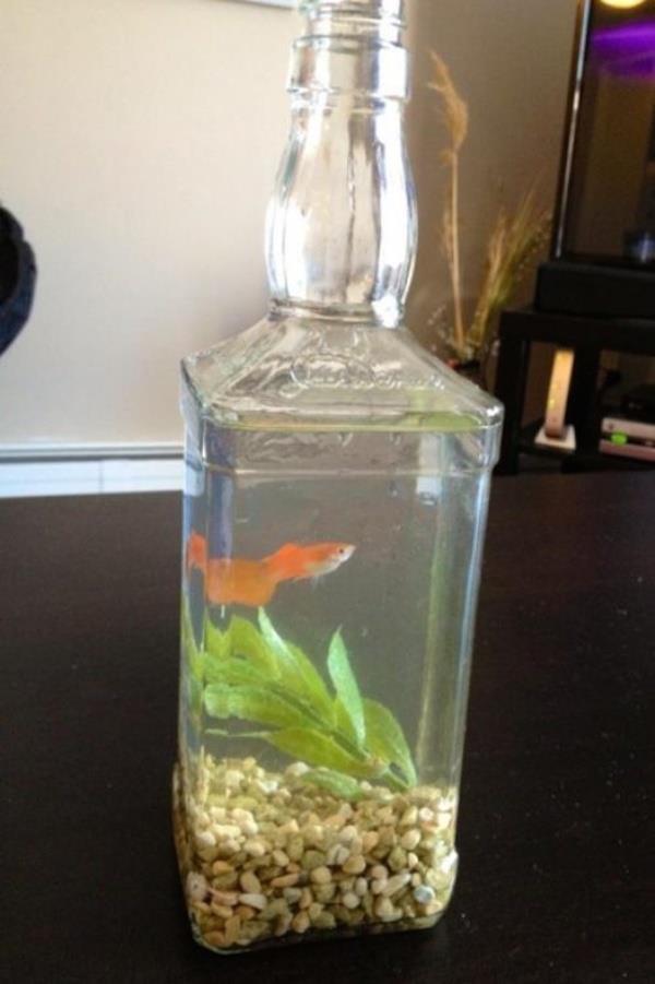 Redneck Inventions Fish Tank