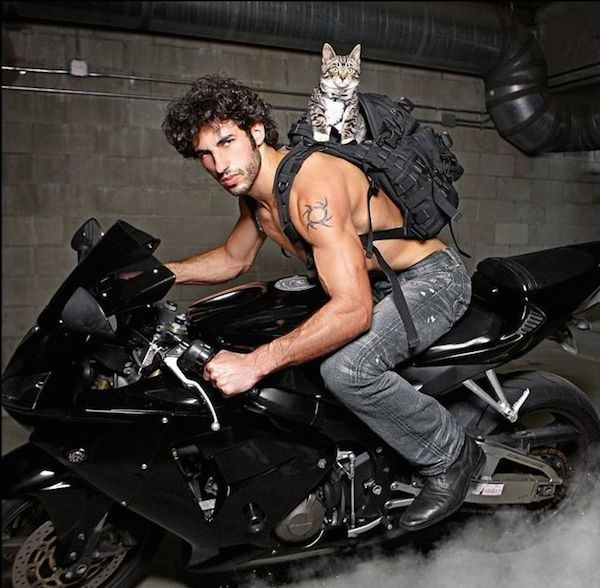 Hot Guy On A Motorcycle With Kitten