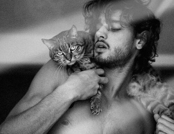 Beard And Kitten