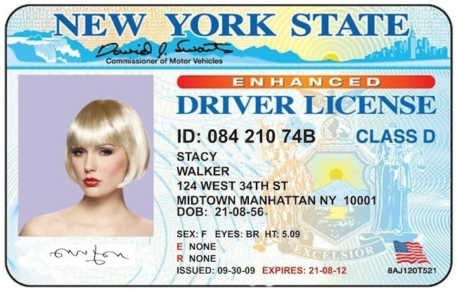 fugitive-chic-license