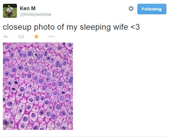 Ken M Funny Tweets