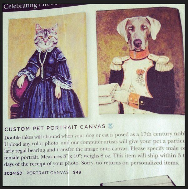 Pet Canvas