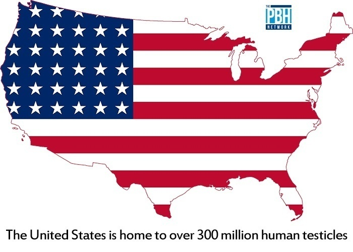 The United States Is Home To Over 300 Million Human Testicles