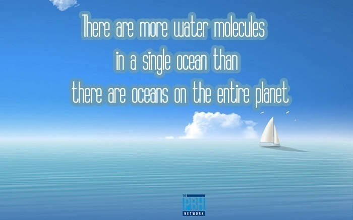 There Are More Water Molecules In A Single Ocean Than There Are Oceans On The Entire Planet