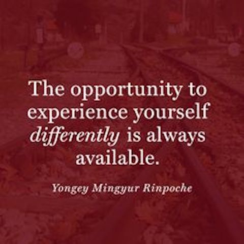 Opportunity And Experiences