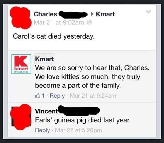 Carols Cat Died