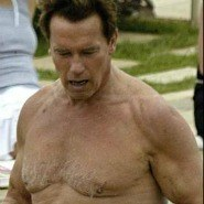 Fat Arnie